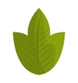 Green leaf or leaves ecology icon design vector image vector image