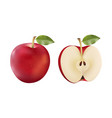 red apple and half isolated in vector image