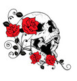 a human skull with roses on white background vector image