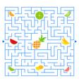 abstract colored complex isolated maze with fruit vector image vector image