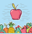 delicious and fresh tropical apple vector image
