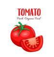 tomato slice vector image