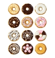 Set delicious donuts in glaze vector image