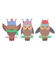 set of funny owls on branches vector image