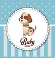 baby shower card invitation cute dog vector image vector image