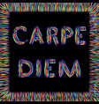 carpe diem latin phrase meaning catch moment vector image vector image