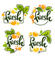 collection of bright stickers emblems logo and vector image