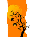 halloween background with two pumpkins hanging on vector image