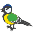 Tomtit vector image vector image
