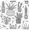 house plants seamless pattern vector image