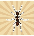 Insect anatomy Sticker Formica exsecta Sketch of vector image