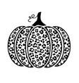 leopard pumpkin vector image vector image