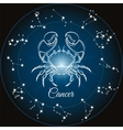 Zodiac sign cancer vector image vector image