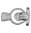 brooch from 3rd century vintage engraving vector image vector image