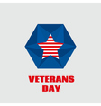 for Veterans day vector image vector image