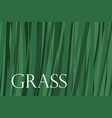 grass banner background vector image