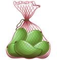 Green mangoes in net bag vector image vector image