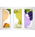 Mixed organic fruits banners collection vector image vector image