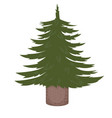 not decorated christmas tree vector image vector image