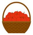 apples in basket harvest festival fruit vector image vector image