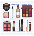 color of makeup products vector image vector image
