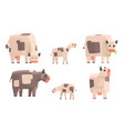 cow bull and calf set geometric farm animals vector image vector image