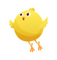 cute little cartoon chick try to fly isolated on a vector image vector image