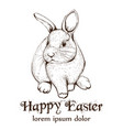 easter bunny rabbit lineart cute spring vector image