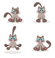 siamese cat icons isolated on white background vector image