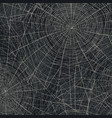 spider web abstract halloween background vector image vector image
