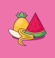 watermelon icon image vector image