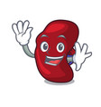 waving spleen character cartoon style vector image