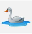cartoon beauty swan floats on water vector image