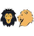 Cartoon lion heads vector image vector image