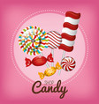 differents sweets candies and lollipop design vector image