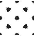 hawthorn leaf pattern seamless black vector image vector image