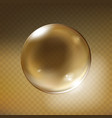 realistic glass sphere transparent vector image vector image