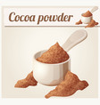 cocoa powder detailed icon vector image vector image