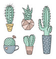 colorful cacti in pots vector image vector image