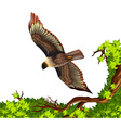 Eagle flying over the tree vector image vector image
