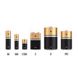 gold and black realistic alkaline battery vector image
