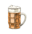 hand drawn glass beer vector image vector image