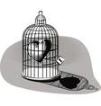 heart imprisoned in a birdcage vector image