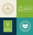 set of design elements and badges for food and vector image vector image