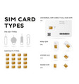 sim card types infographics in flat style vector image vector image