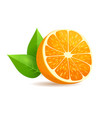sliced in half orange with leaves realistic vector image vector image