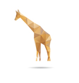 Giraffe abstract isolated on a white backgrounds vector image