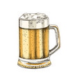 hand drawn glass beer vector image