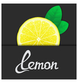 Just of lemon vector image vector image