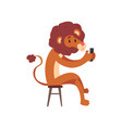 lion sitting on a chair with a smartphone cute vector image vector image